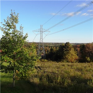Forestry Assessment for the Proposed Québec-New Hampshire Electricity Interconnection
